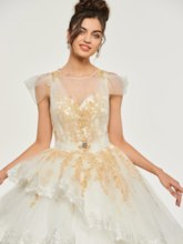 Appliques Button Scoop Short Sleeves Quinceanera Dress