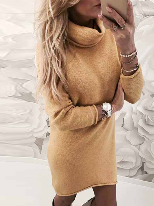 Turtleneck Long Sleeve Straight Women's Sweater Dress