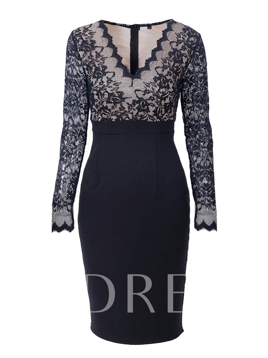 Buy Lace Patchwork Back Zipper Women's Bodycon Dress, Spring,Fall,Winter, 13149340 for $31.99 in TBDress store