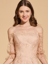 A-Line Off-the-Shoulder Lace Empire Prom Dress