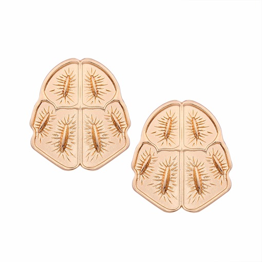 Geometric Alloy Overgild Insect Design Earrings