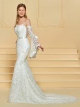 Mermaid Lace Wedding Dress with Oversleeve