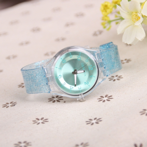 Transparent Quartz Plastic Watches