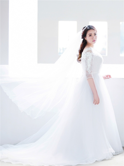 Illusion Neck Appliques Plus Size Wedding Dress