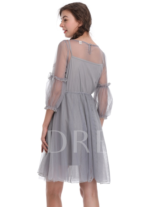 Lantern Sleeve A-Line Embroidery Day Dress