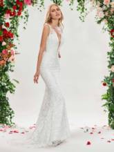 Deep V-Neck Mermaid Lace Wedding Dress