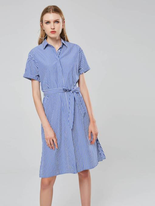 Polo Neck A-Line Short Sleeves Women's Day Dress