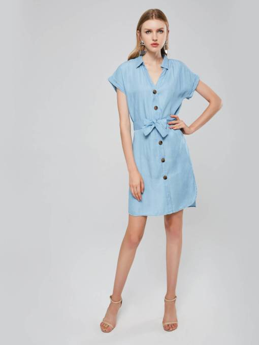 Short Sleeves Lace-Up Single-Breasted Women's Day Dress