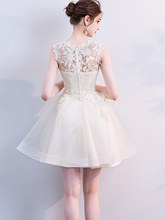 A-Line Appliques Jewel Homecoming Dress