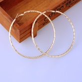 Simple Exaggerated Big Circle Earrings