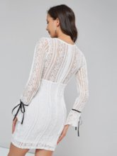 V-Neck Ruffle Sleeve Women's Lace Dress