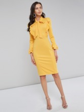 Bowknot Long Sleeve Women's Bodycon Dress