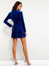 Lace-Up Stand Collar A-Line Women's Party Dress