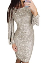 Sequins Long Sleeve Round Neck Regular Women's Party Dress