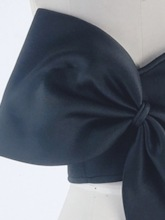 Strapless Bowknot Zipper Sexy Women's Crop Top