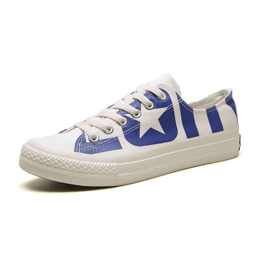 Low-Cut Upper Simple Lace-Up Round Toe Men's Skate Shoes