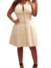 Plus Size Sleeveless Round Neck Zipper Women's Day Dress