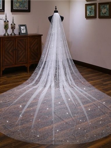 Cathedral Train Wedding Veil