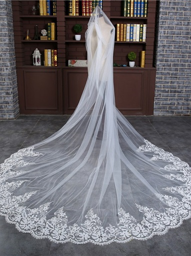 Lace Edge Appliques Tulle Cathedral Wedding Veil