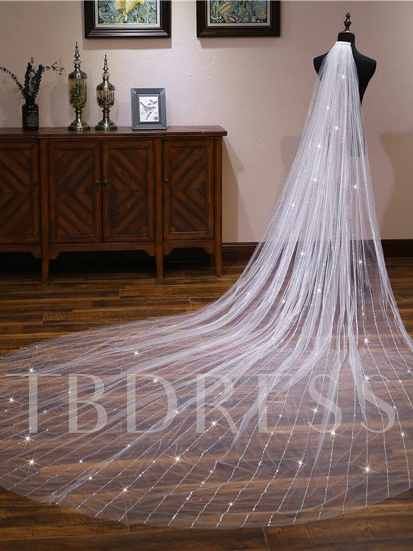 Sequined Cathedral Wedding Veil 2019