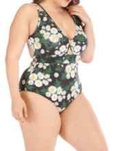 Plus Size Sexy Color Block Print One Piece Women's Swimwear
