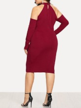 Plus Size Long Sleeve Stand Collar Hollow Pullover Women's Dress