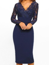 Long Sleeve V-Neck Floral Bodycon Women's Lace Dress