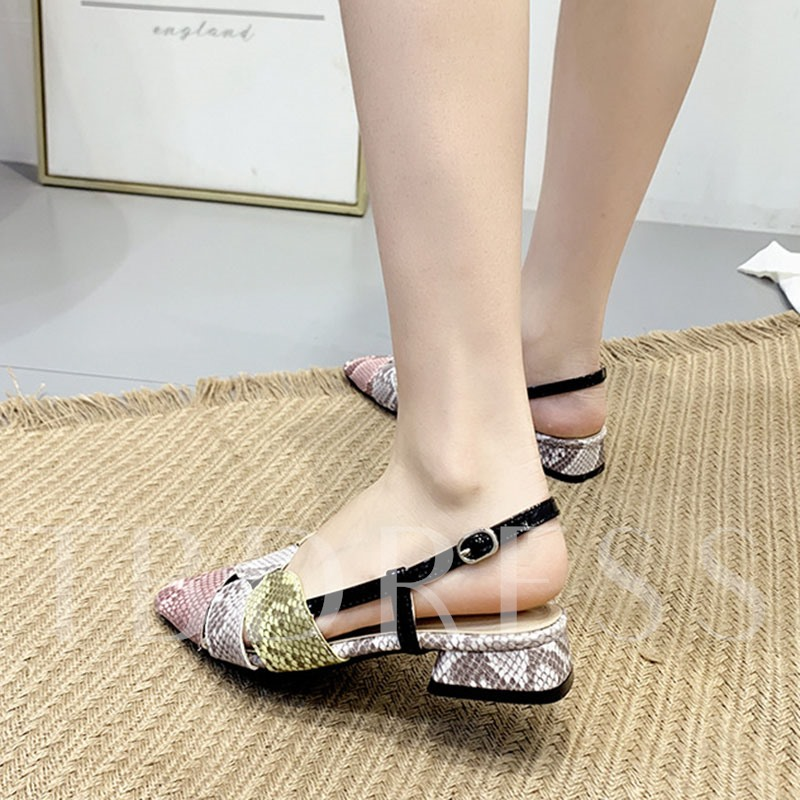 Slingback Strap Buckle Pointed Toe Women's Sandals