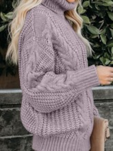 Plain Regular Winter Women's Sweater