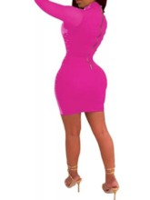 See-Through Long Sleeve Above Knee Turtleneck Mid Waist Women's Bodycon Dress