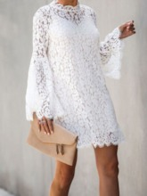 Long Sleeve Above Knee Lace Stand Collar Flare Sleeve Women's Lace Dress