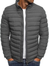 Stand Collar Plain Standard Zipper Men's Down Jacket