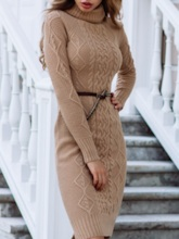 Mid-Calf Long Sleeve Turtleneck Pullover Female's Dress