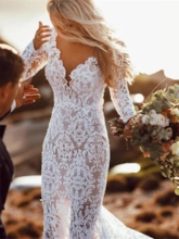 Long Sleeves V-Neck Lace Backless Wedding Dress 2020