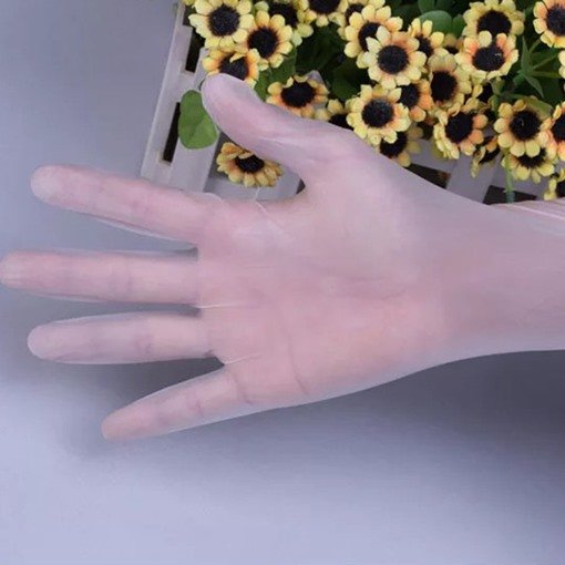 Disposable PVC Gloves Food-Grade Catering Transparent Waterproof Plastic Protective Gloves