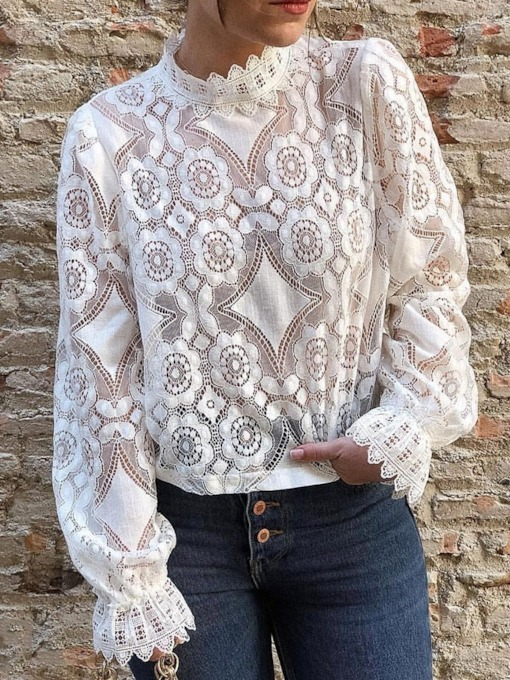 Plain Round Neck Long Sleeve Lace Casual See-through Women's Blouse