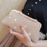 Fashion Women Banquet Polyester Clutches & Evening Bags Soft Bags