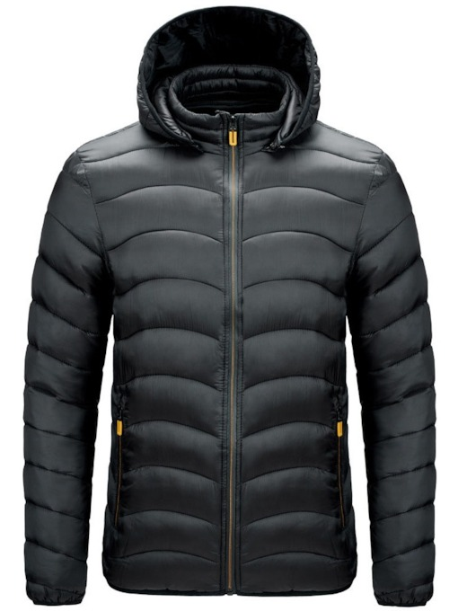 Standard Plain Stand Collar Casual Men's Down Jacket
