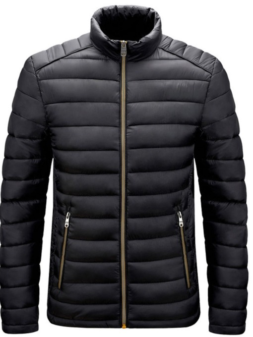 Plain Stand Collar Standard European Men's Down Jacket