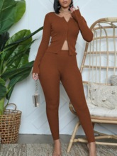 Pants Plain Sexy Zipper Women's Two Piece Sets