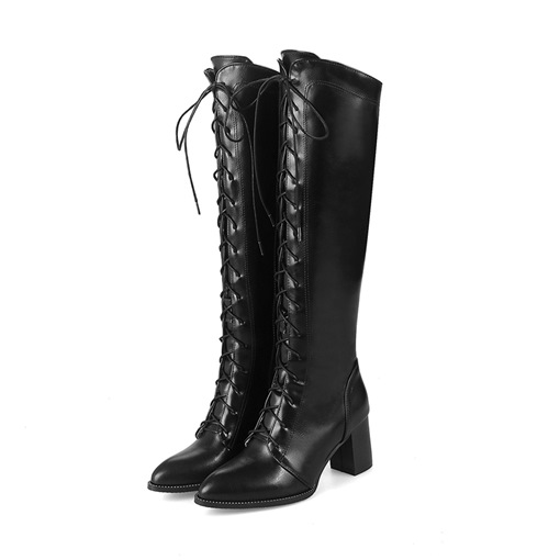 Plus Size Plain Pointed Toe Chunky Heel Side Zipper Thread Boots