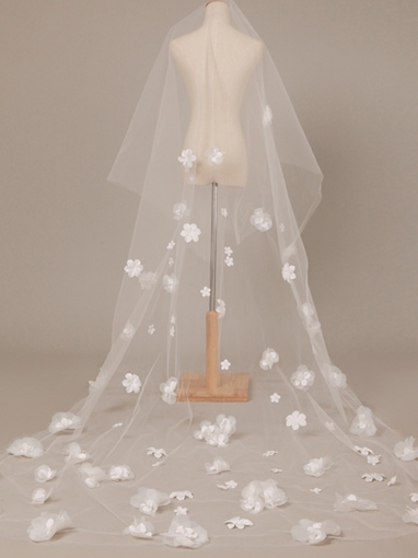 Wonderful Chapel Length Appliques Wedding Veil