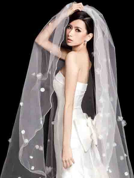 Wedding Bridal Veil With Appliques Edge