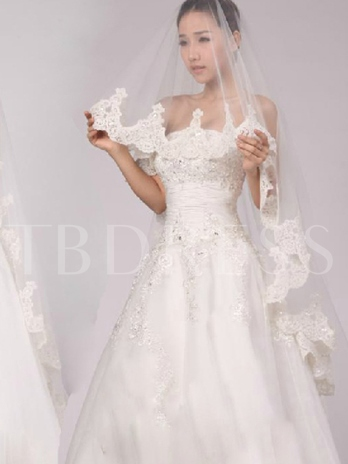 Tulle Cathedral Length Wedding Veil With Appliques Edge